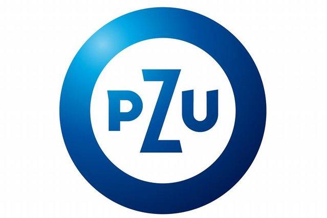 ПЗУ (PZU) Украина